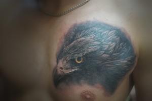 птиц на груди